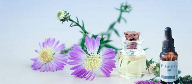 Les propriétés de l'huile essentielle d'Hélichryse